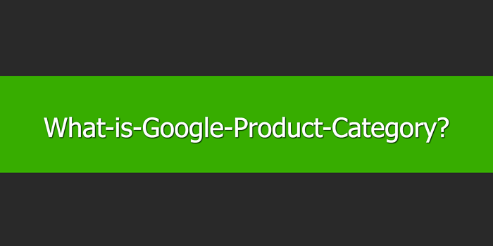 What is Google Product Category