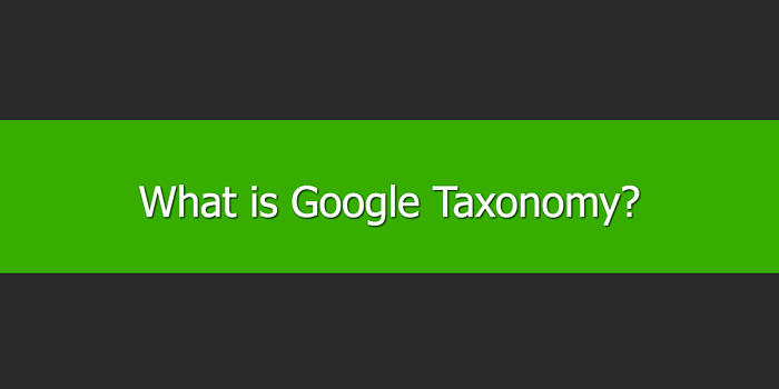 What is Google Taxonomy