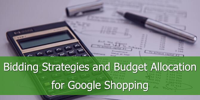 Bidding Strategies and Budget Allocation in Google Shopping