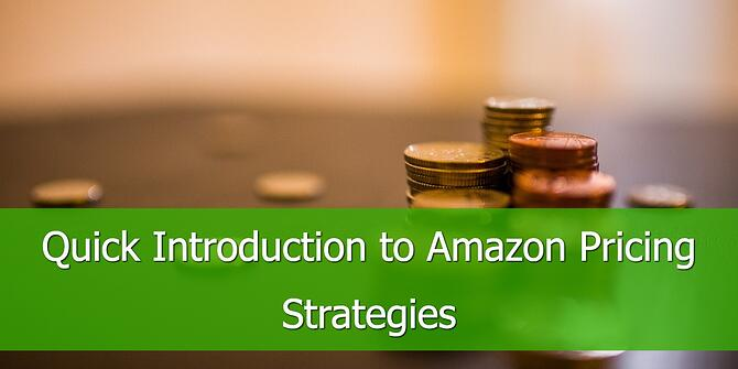 Introduction to Amazon Pricing Strategies