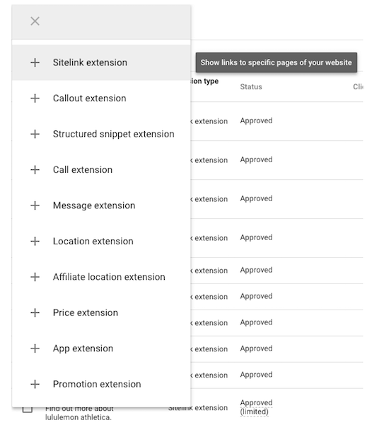 google-extensions-options